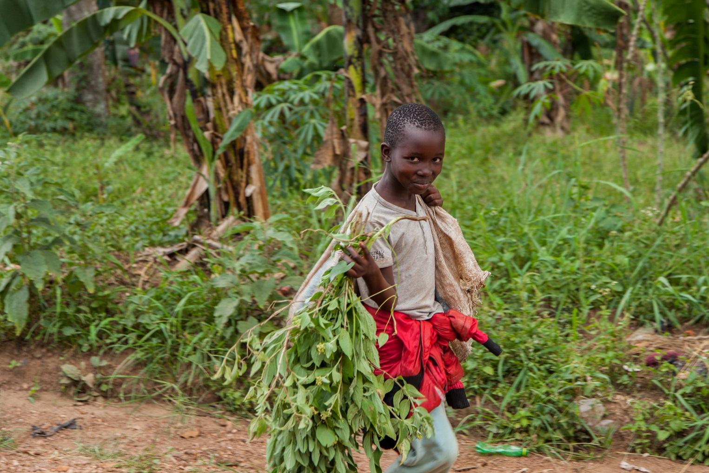 Child labour lnhibits education